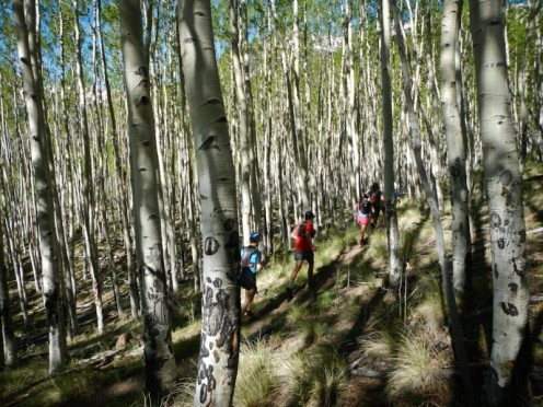 Much of the running above about 11,000' was fairly exposed but plenty of our days were spent winding through Aspens and pines.  Beautiful, serene, the kind of scene that almost helps you forget how bad you smell.